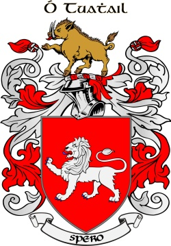 TOOLE family crest